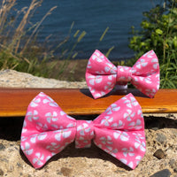 Our Good Dog Spot Pink Propeller Bowtie