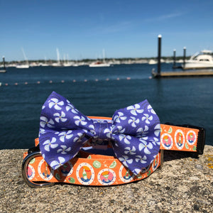 Our Good Dog Spot After 5 Cocktail Dog Collar and Purple Opulence Propeller Bow Tie