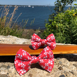 Our Good Dog Spot Red Propeller Bow Tie