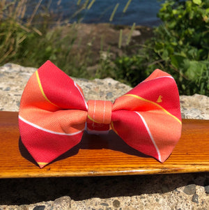 Our Good Dog Spot Red and Melon Ivy League Repp Stripe After 5 Bowtie