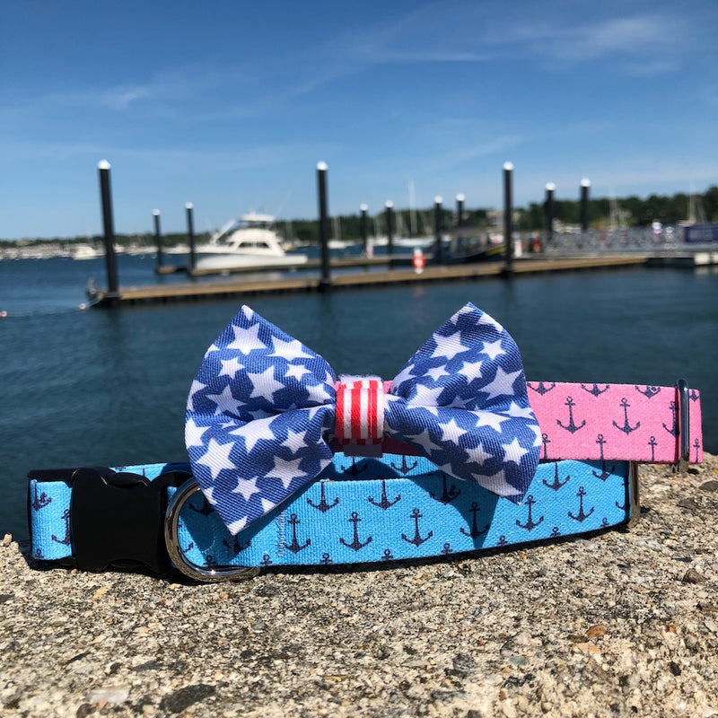 Our Good Dog Spot Anchors Aweigh Dog Collars and Stars and Stripes Forever Bow tie