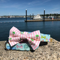 Our Good Dog Spot Striped Palm Tree Bowtie and After 5 Bows and Bowties dog collar