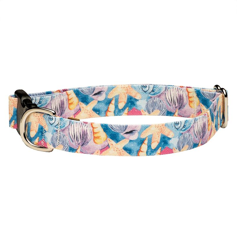 Our Good Dog Spot Seashells and Starfish on the Beach dog collar