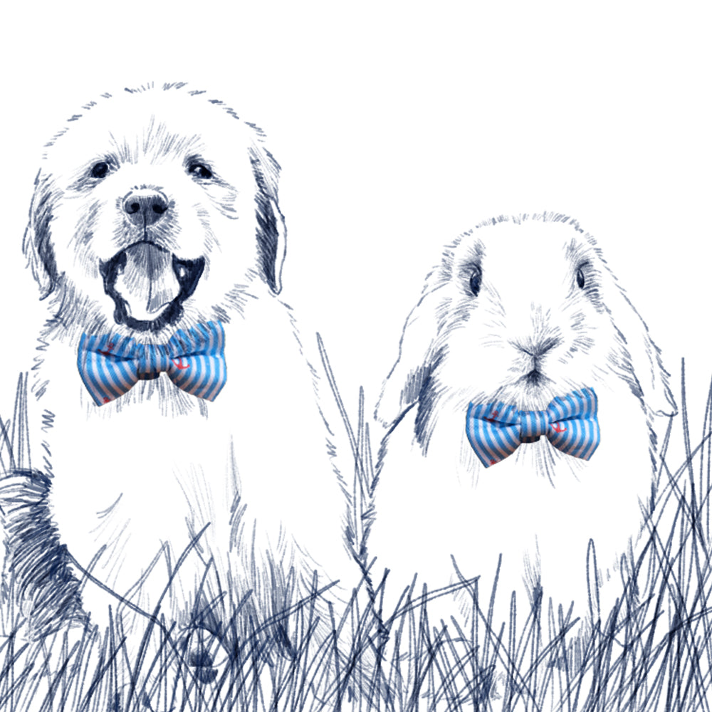 Easter Oxford Stripe Bow Tie - Robin's Egg Blue
