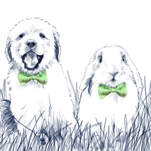 Easter Oxford Stripe Bow Tie - Jelly Bean Green
