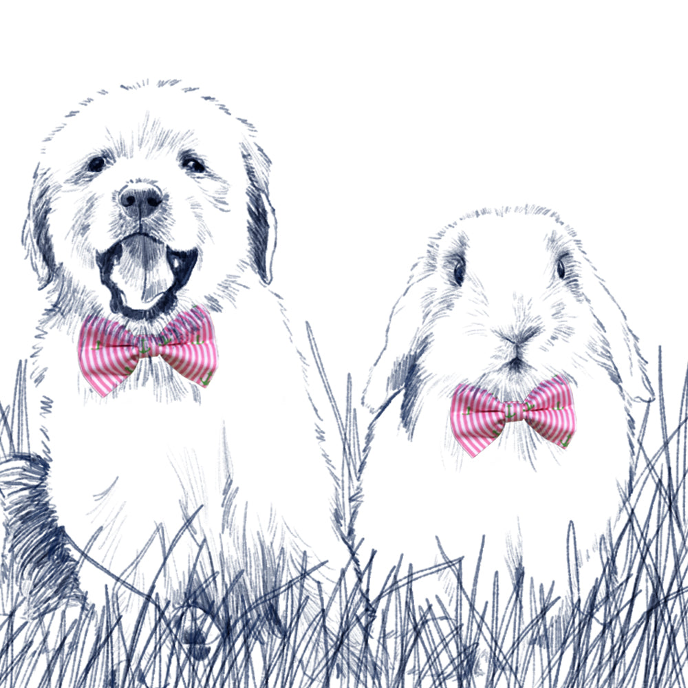 Easter Oxford Stripe Bow Tie - Cottontail Pink