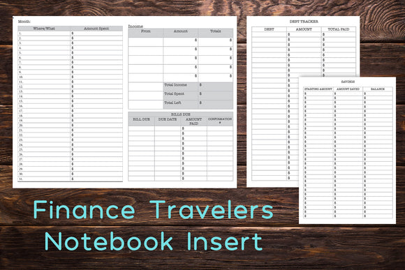 budget/finance travelers notebook insert