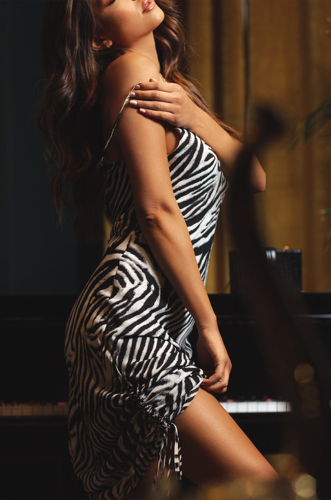 Take Me Away Dress - Zebra