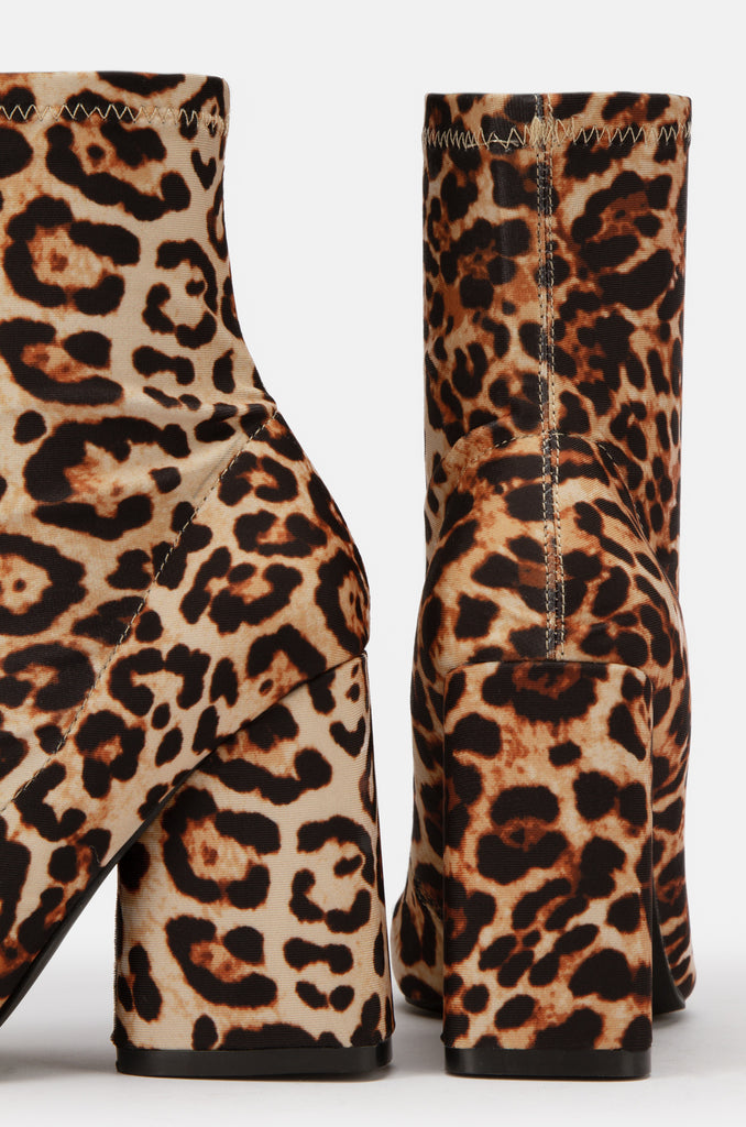 The Icon - Leopard