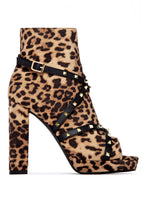 Ready For Anything - Leopard
