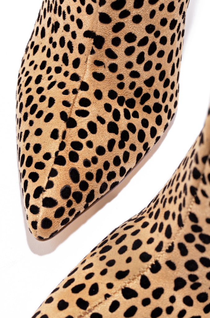Street Icon - Cheetah