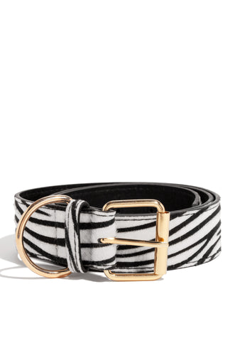 Front Row Belt - Zebra