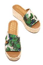 Tropic Day - Tropical Print
