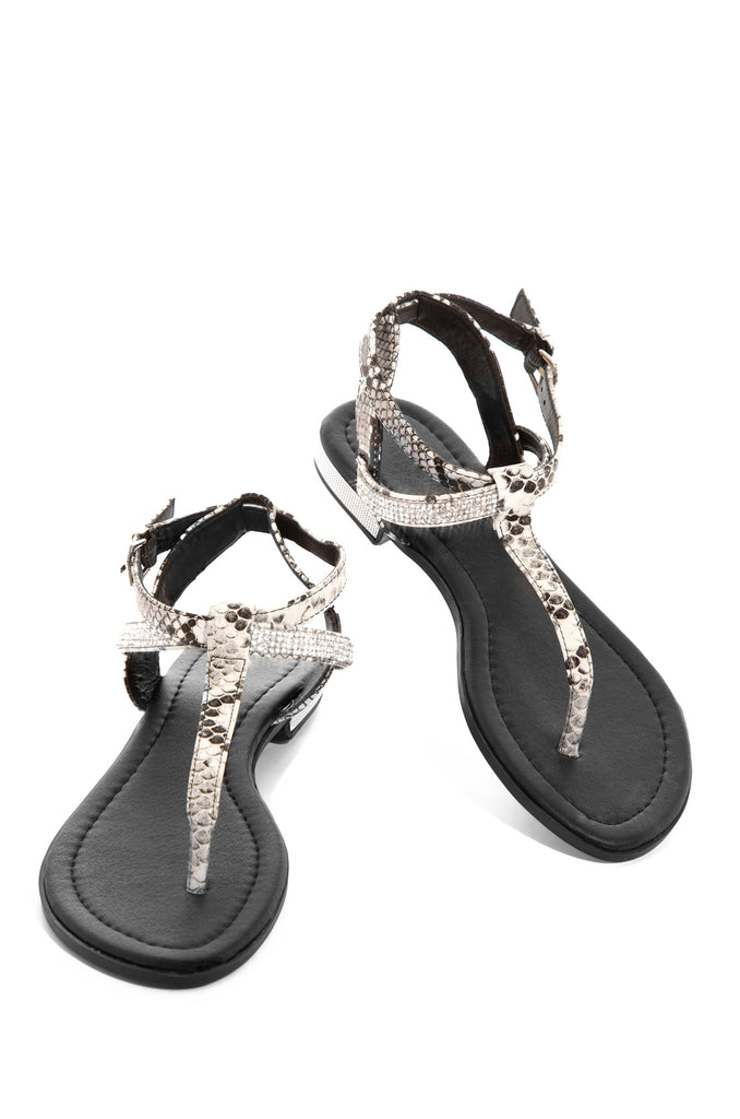 Such A Snake - Black                            Regular price     $27.99         Sold out 10