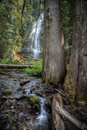 Proxy Falls Perspective