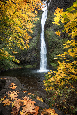 Horsetail Falls in the Columbia River Gorge