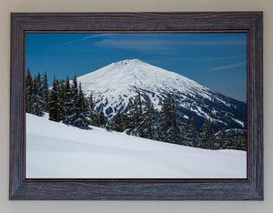 Beautiful Bachelor FRAMED