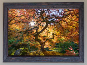 Eric's Tree FRAMED  **SOLD**