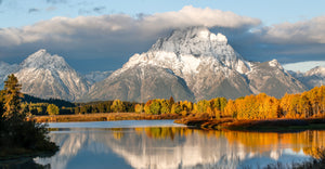 Fall Glory At Oxbow Bend