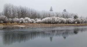Winter Frost On The Deschutes