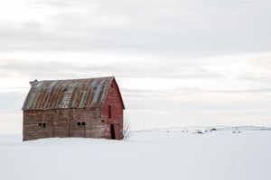 The Lonely Barn