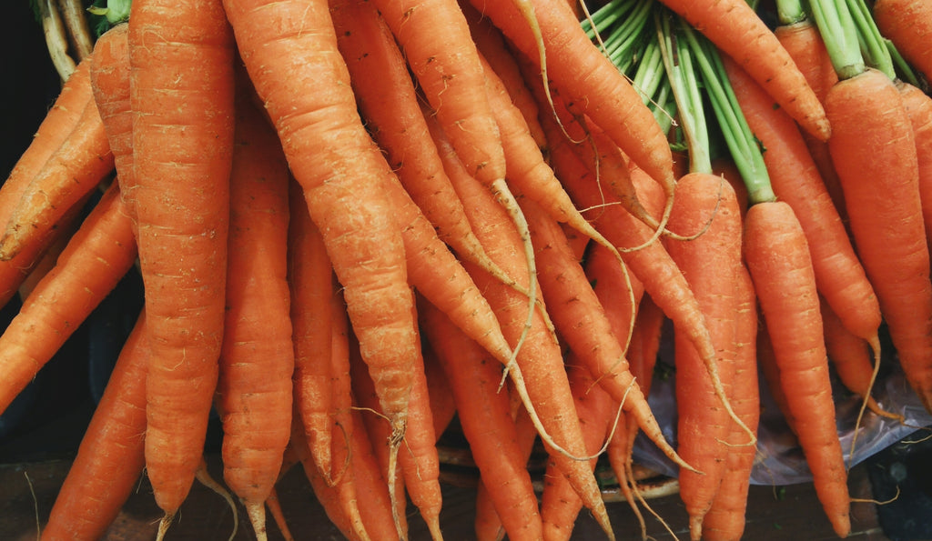 Carrot Root Extract: The Skincare Ingredient for Weathered Skin