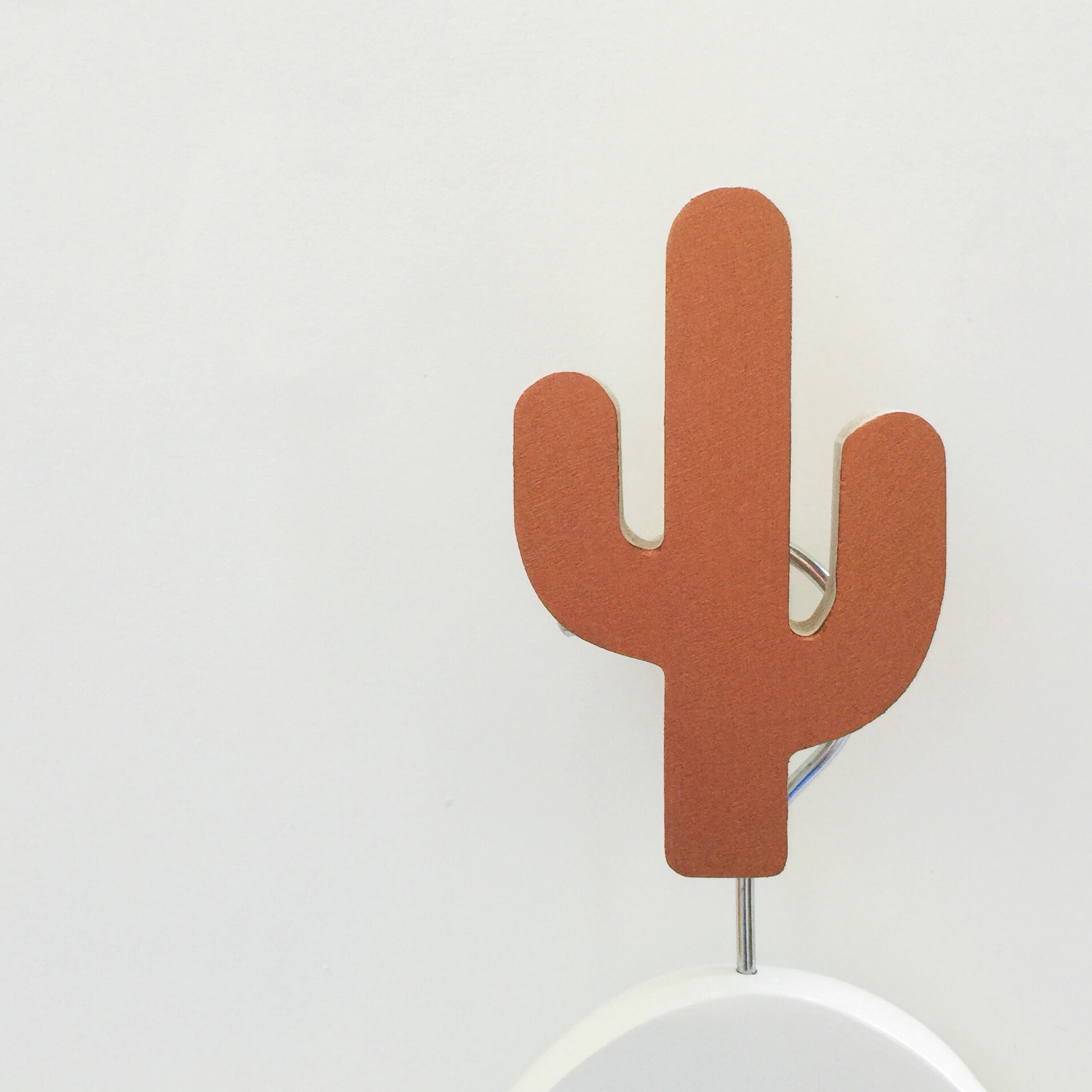 knobbly. cactus wall hook copper