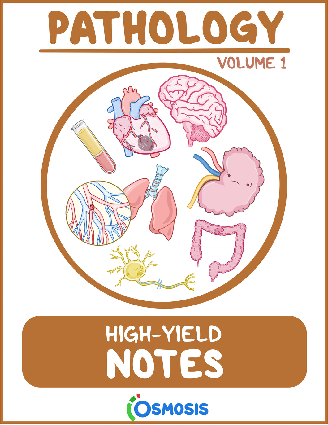 Osmosis High-Yield Pathology Notes: Volume 1