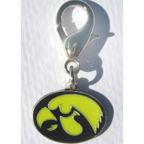 Iowa Hawkeyes Collar Charm