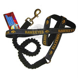Iowa Hawkeyes Bungee Ribbon Pet Leash