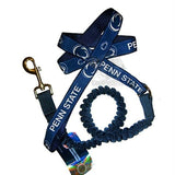 Penn State Nittany Lions Bungee Ribbon Pet Leash
