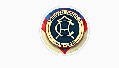 Tributo Aguila does incredible work for America fans.