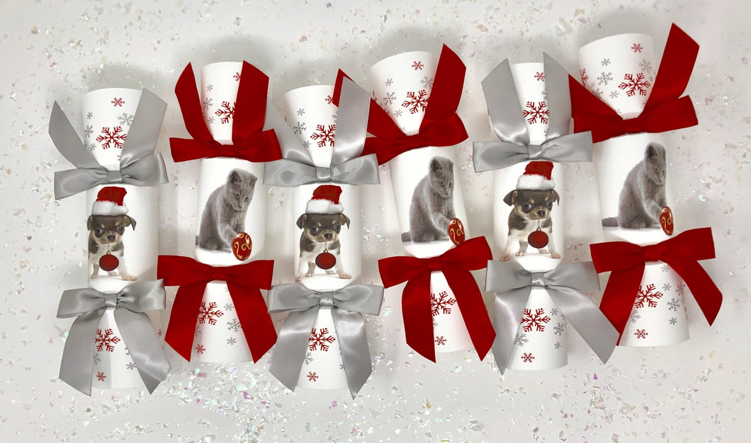 Dog or Cat Christmas Cracker