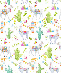 DIY Birthday Cracker Kit - Lamas & Cactuses