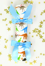 Boys Birthday Party Crackers