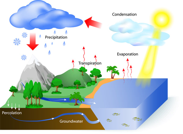 Hydrologic Cycle Of Water