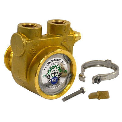 "Fluid-o-Tech Lead Free Brass Rotary Vane Pump with Brass Key 250 gph 1/2"" NPT"