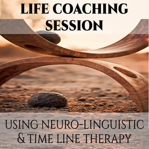 Life Coaching Session