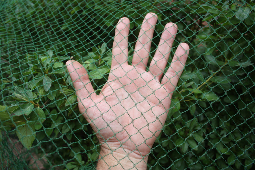 Deer-Terrent Plant Netting Cover- Size 6' X 6' For Shrubs Up To 2.5-3' Tall.