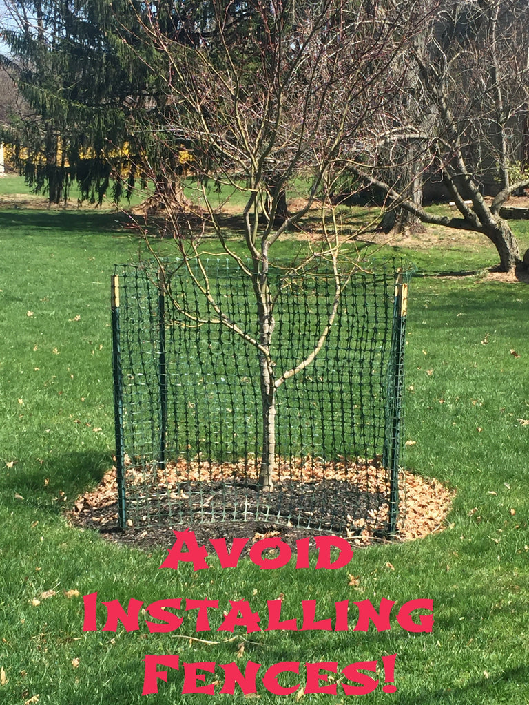 Staking a deer fence can be unsightly around young trees.