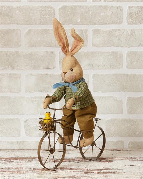 Country Bunny On Bike