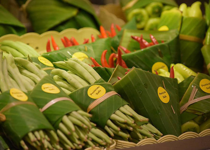 Leaf Your Plastic Packaging for Eco-Friendly Banana Leaves