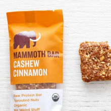 Raw Sprouted Protein Bar - Cashew Cinnamon (10-pack)
