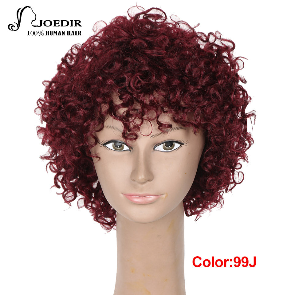 Joedir Human Hair Wigs Machine Made Remy Kinky Curly Wigs For Black