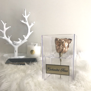 """Enchantress"" Gold Boxed Single Rose"