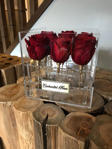 """Deep Love"" Wine Red Boxed Rose"