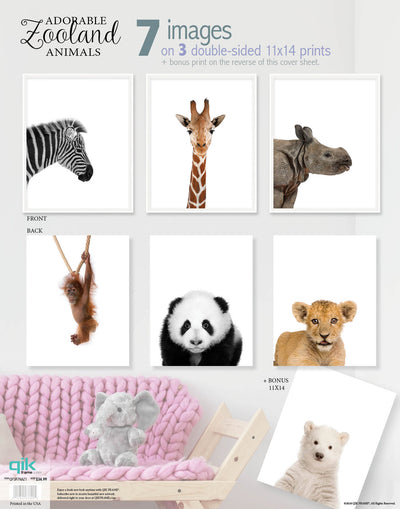 Adorable Zooland Animals - 3pc Double-Sided Art Print Set