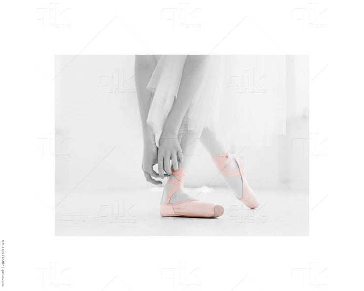 Ballet Pink & Gray - 5pc Double-Sided Art Print Set
