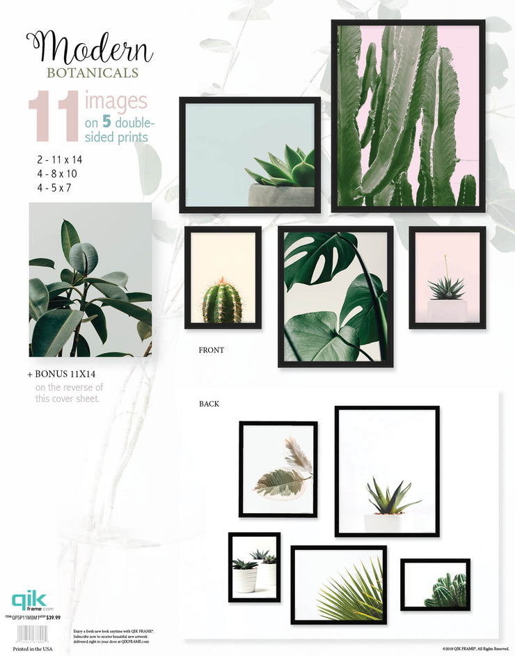 Modern Botanicals - 5pc Double-Sided Art Print Set