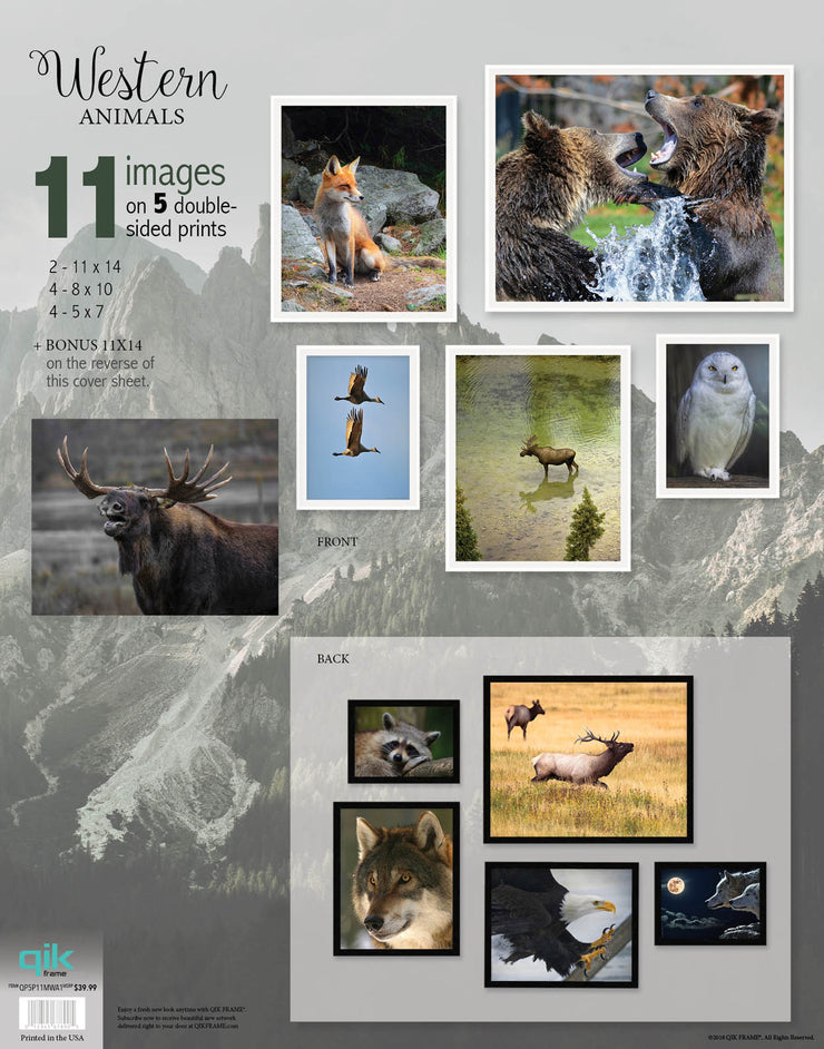 Western Animals - 5pc Double-Sided Art Print Set